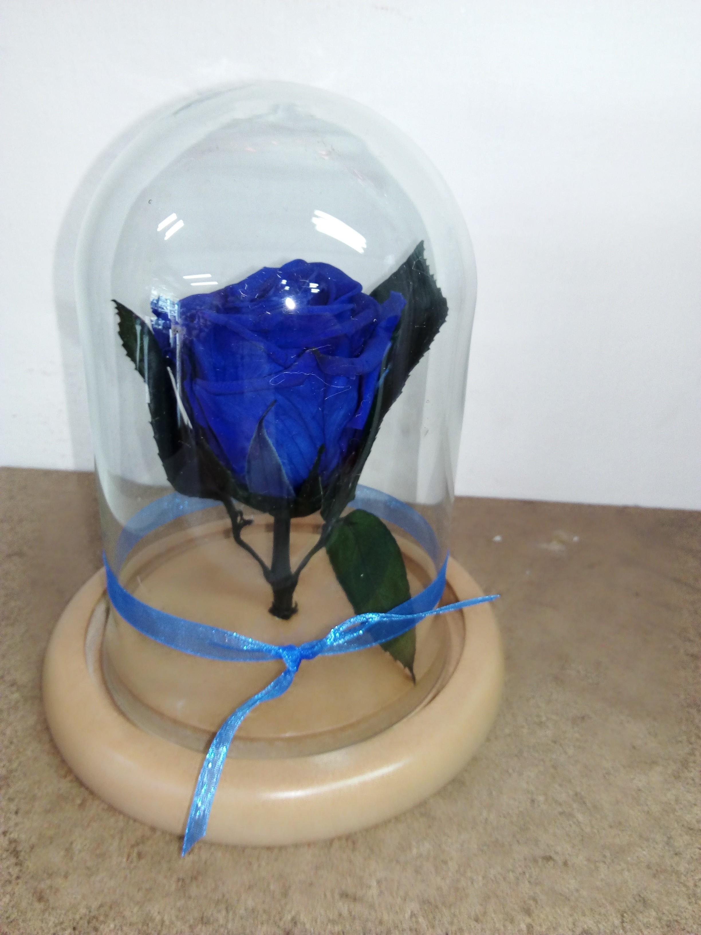 eterna Azul